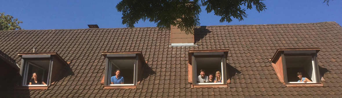 dachfenster1