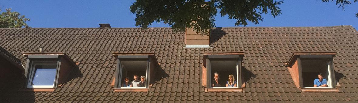 dachfenster4
